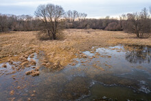 Aerial View Of A Wetland With Frozen Water In Winter. Tree Growing In A Meadow In Hyporheic Zone. Nature Background With Dry Yellow Grass And Floodplain Covered With Ice.