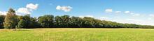 Weide Im Spätsommer Am Waldrand - Wiese Mit Bäume Panorama