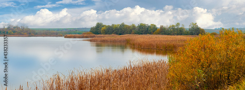 Fotografia Reed thickets on the river in autumn in good weather, reflecting clouds in the r