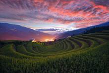 Terraced Rice Fields At Sunset, Mu Cang Chai, Yen Bai, Vietnam