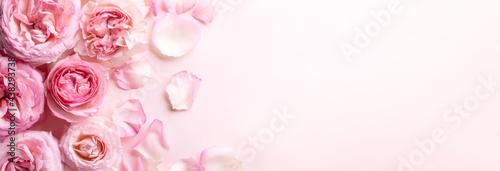 Fotografie, Obraz Flowers composition