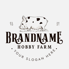 Kune Kune Pig Farm Logo Design Template