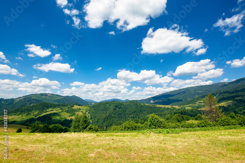 rural field in mountains. beautiful nature landscape. sunny summer day. clouds on the sky. travel back country concept #438363117