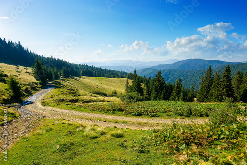 countryside road through forested hills and meadows. summer mountain landscape on a bright sunny morning. clouds on the blue sky #438363338