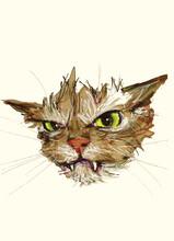 Cat Watercolor Illustration