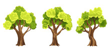 Trees With Green Leafage. Set Of Abstract Stylized Trees. Natural Illustration