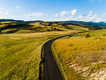 Sunlit Country Road In Rural Paddock Landscape