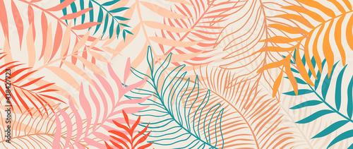 Fotografia, Obraz Summer tropical background