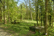Socles En Béton D'un Ancien Pylône De Haute-tension à L'arboretum De Groenendael Au Sud-est De Bruxelles
