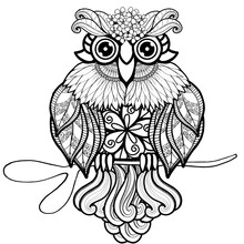 Bird Illustration Owls Adult Coloring Book Page Boho Hippie Animals