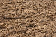 Plowed Or Tilled Field Background