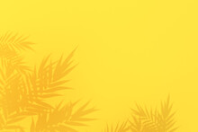 Summer Tropical Palm Leaves Shadow On Yellow Background, 3D Rendering.