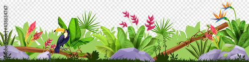 Fotografie, Obraz Jungle floral border, vector tropical nature illustration, toucan, green grass, leaves, stone, exotic flowers