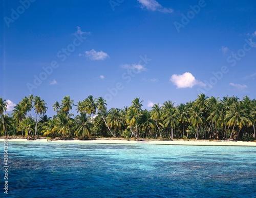 maldives, sea, palm beach, indian ocean, palm island, detail, beach, sandy beach Fototapet
