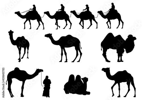 Fotografía Camel Silhouettes. Vector Image