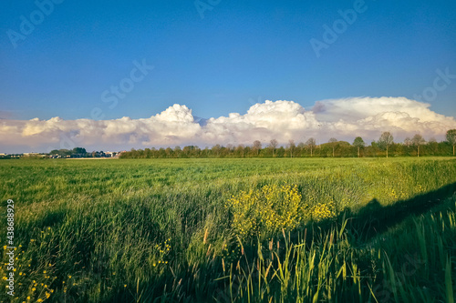 Wallpaper Mural Distant line of towering cumulus clouds and showers over the Dutch polder landsc