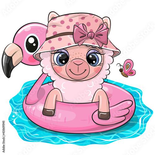 Fototapeta premium Alpaca in swimming on pool ring inflatable flamingo