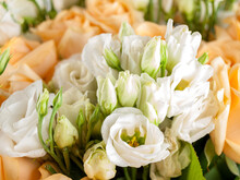 Eustoma Is A Genus Of Plants In The Gentian Family, Cultivated Flowers Belonging To This Genus Are Called Lisianthus, Close-up Of Flowers, A Bouquet Of White Flowers