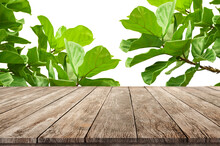 Wooden Desk With Fresh Fig Green Leafs As Frame Wooden Stand For Product Advertisement Background