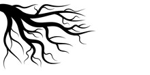 Branches Of Dead Tree Design On White Background
