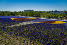 """Fragment Of Painting """"Victorious Red"""" Made Of Flowers. Flowerbed Of Viola Tricolor Pansy Flowers (Heartsease Or Johnny Jump Up). Alexandra Rodchenko. Landscape Park. Krasnodar, Russia - 05 May 2021"""