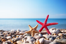 Summer Photo Of Starfish On Beach And Free Space For Your Decoration.