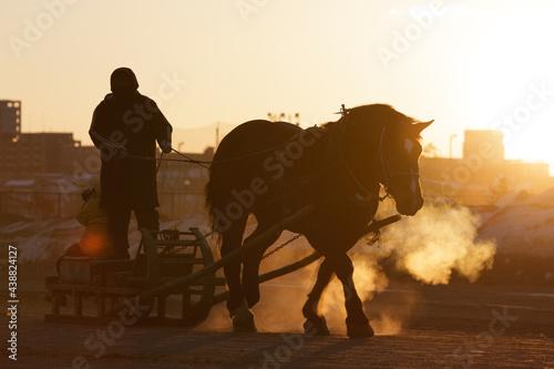 Fotografia, Obraz ばんえい競馬の調教