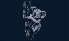 Koala On Dark Background