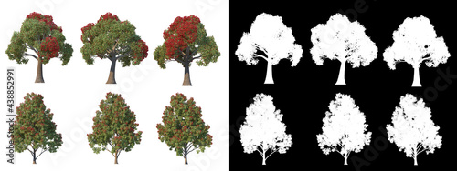 Fotografie, Obraz A wide variety of trees and shrubs