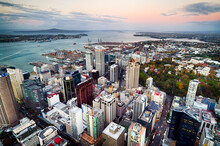 The View On Auckland City, New Zealand