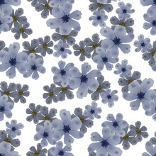 Grey Flower Seamless Pattern For Fabric Design