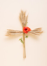 Wheat Ears Arranged In The Shape Of A Cross. Summer Idea Isolated On A Pink Background. Top View.