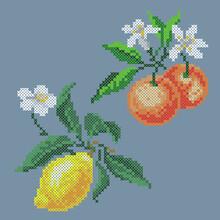 Vector Art Embroidery Lemon And Tangerine