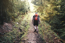 Young Man With Hiking Bag On A Trekking Trail In Forest. Back View.