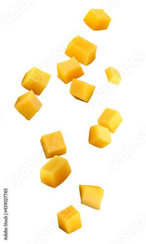 Canvas falling mango chunks isolated on a white background
