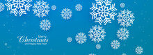 Beautiful Merry Christmas Snowflake Blue Banner Template Vector Design