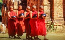 Myanmar, Bagan, Mandalay Division, Buddhist Monks Holding Bowls During Morning Alms