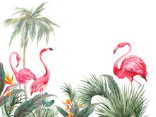 Tropical Wallpaper Design. Illustration With Palm Tree, Exotic Leaves And Flamingos. Pink Birds And Jungle Flora Isolated On White Background.