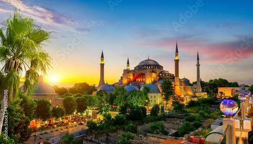Fotografiet Hagia Sophia and palm tree