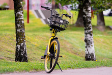 A Rental Yellow Bicycle Stands In A Picturesque Place Among Two Birches.