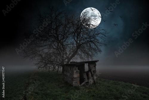Fotografiet mroczny obraz starej chaty w nocy z pełnią księżyca