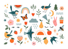 Set Of Nature Vector Design Elements Isolated On White Background. Birds, Floral And Flower Elements, Fruit, Insects And Weather Elements.