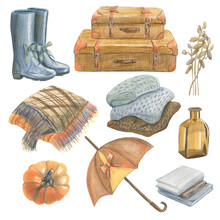 Collection Of Different Autumn Items And Floral Objects. Made In The Technique Of Colored Pencils. Hand Drawn.