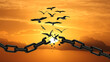 Freedom Concept : Birds Broken The Chain and Flying Away. Chains transform to free Bird At Sunset. yellow Orange Sky. Concept Of Liberty.