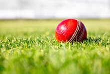 Cricket Ball On Green Grass Of Cricket Pitch Background