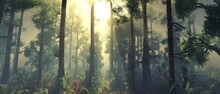 Forest In The Rays Of The Sun, Trees In The Fog In The Morning, Sunset In The Park In The Haze, 3D Rendering