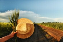 Straw Hat And Ears Of Wheat In Hand Overlooking A Dirt Road In The Fields. The Atmosphere Of Summer Holidays And Travel.