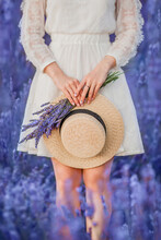 Calm Scene With Hands Of Young Woman In Retro White Dress Holding Straw Hat And Lavender Bouquet In Hands. She Stay In Front Of Blue Colorful Lavender Field In France, Provence. Vertical Photo
