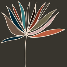Colorful Abstract Floral Line Drawing