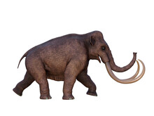 Ice Age Columbian Mammoth - During The Ice Age Of North America The Columbian Mammoth Was The Megafauna Of The Continent.
